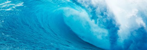 We are fluid and adaptable, we surf the wave of each customer!